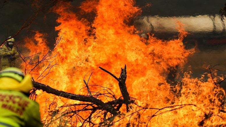 Bushfire Mizoram